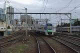 IMGP7992.jpg