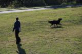 Woofer the Wonder Dog