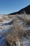 Winter - 2009