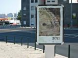Campanha FOCINHOS _ Câmara Municipal de Lisboa