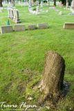 Tombstones 3