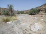 In the Wadis Hatta 3.jpg