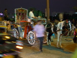 Horse and Carriage Mumbai.jpg