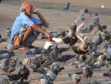 Bird Seed Seller Mumbai.jpg