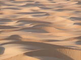 Sea of Sand Liwa Oasis.jpg