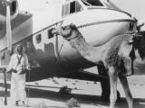 historic_sharjah_airport