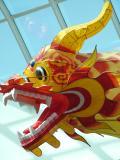 1615 26th May 06 Chinese Dragon.JPG