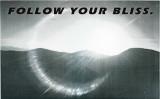 follow bliss.jpg