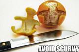 avoid scurvy.jpg