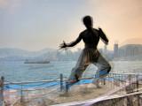 Bruce Li in action