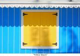 023  Yellow Doors.jpg