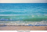 094  Transparent Turquoise.jpg