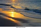104  Wet Sand Of Gold.jpg