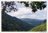 Vosges Valley