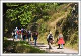 Pilgrims/Hikers