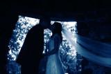 Danielle & Robert Wedding Highlights