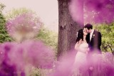 Laurie & Alex Wedding Highlights