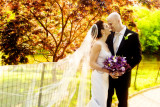 Minoo & Robert Wedding Highlights