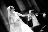 Sheryl & Rick Wedding Highlights