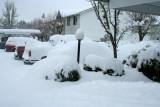 Winter Of '08
