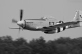 North American P-51D Mustang Charlotte's Chariot.jpg