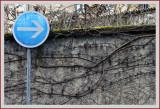 Flèche SDIM3168.jpg