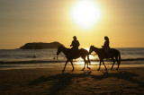 Manuel Antonio Beach Horeback Riding