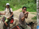 Eating Guavas on Horseback