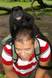 The Osa Wildlife Sanctuary - little Howler Monkey