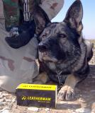 Leatherman Supports America's Four-Legged Troops
