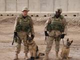 SRA Joshua Rose  MWD Dino and SSgt Ben Jones  MWD Jannine