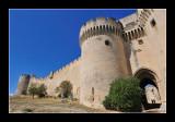 Villeneuve-lès-Avignon - Provence 15 (EPO_4971)