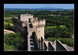 Villeneuve-lès-Avignon - Provence 15 (EPO_4977)