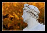 Versailles gardens (EPO_5651)
