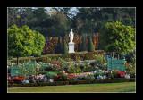 Versailles gardens (EPO_5714)
