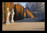 Versailles gardens (EPO_5672)