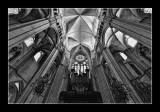 Nef et Orgue de Bourges (EPO_5269)
