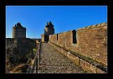 Chateau de Fougères (EPO_6552)