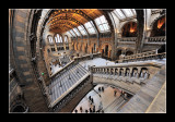 Natural History Museum (EPO_7348)
