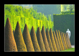 Versailles gardens (EPO_7993)