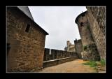 La Cité de Carcassonne (EPO_7696)