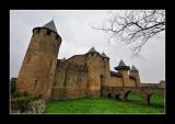 La Cité de Carcassonne (EPO_7705)