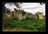 Forteresse médiévale de Blanquefort (EPO_10434)
