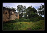 Forteresse médiévale de Blanquefort (EPO_10443)