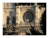 Notre Dame de Paris. 9