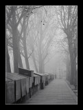 Paris misty morning 1