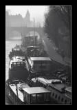 Paris misty morning 8