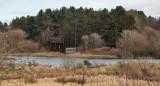 Morton Lochs hides