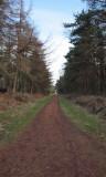 Morton Lochs walk