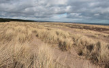 Tentsmuir - looking north from Kinshaldy